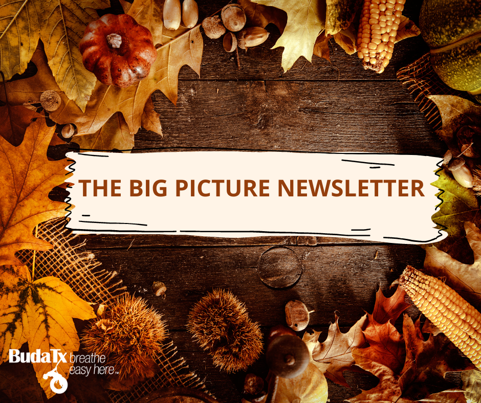 THE BIG PICTURE NEWSLETTER (7)