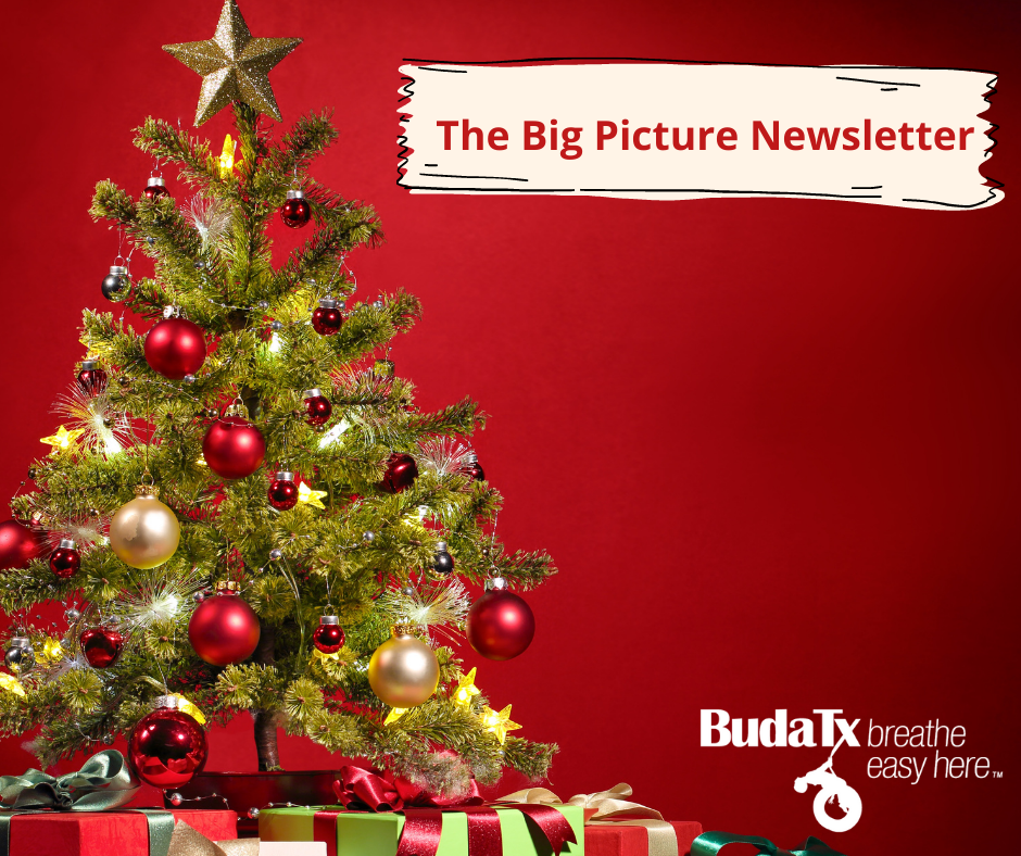 The Big Picture Newsletter (8)