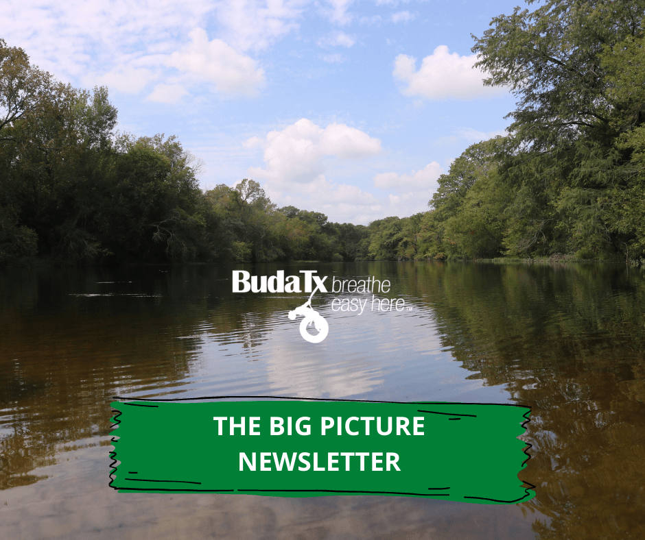 THE BIG PICTURE NEWSLETTER (3)