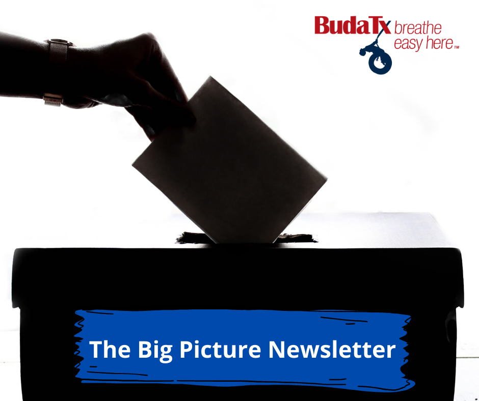 The Big Picture Newsletter (5)