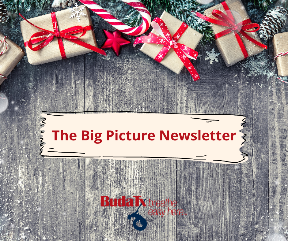 The Big Picture Newsletter (10)