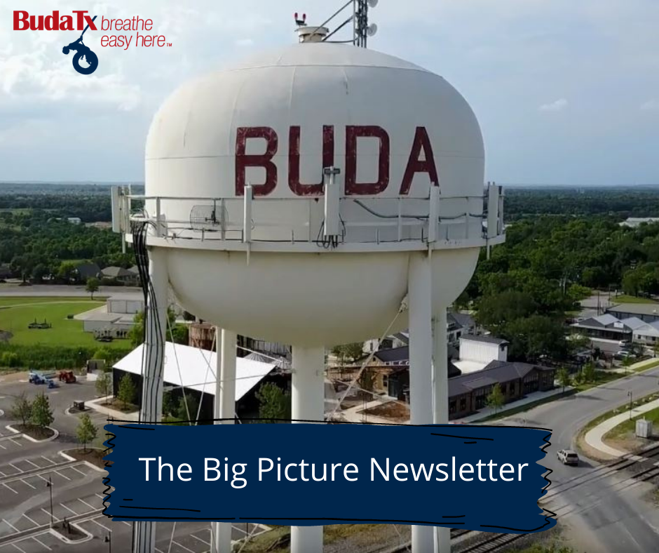 The Big Picture Newsletter (19)