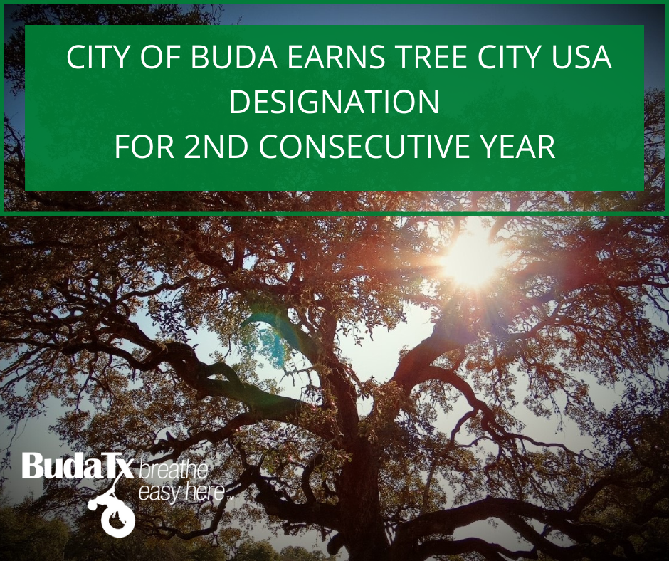 CITY OF BUDA EARNS TREE CITY USA DESIGNATION FOR 2ND CONSECUTIVE YEAR